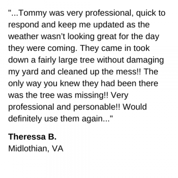 Tree Service review midlothian va